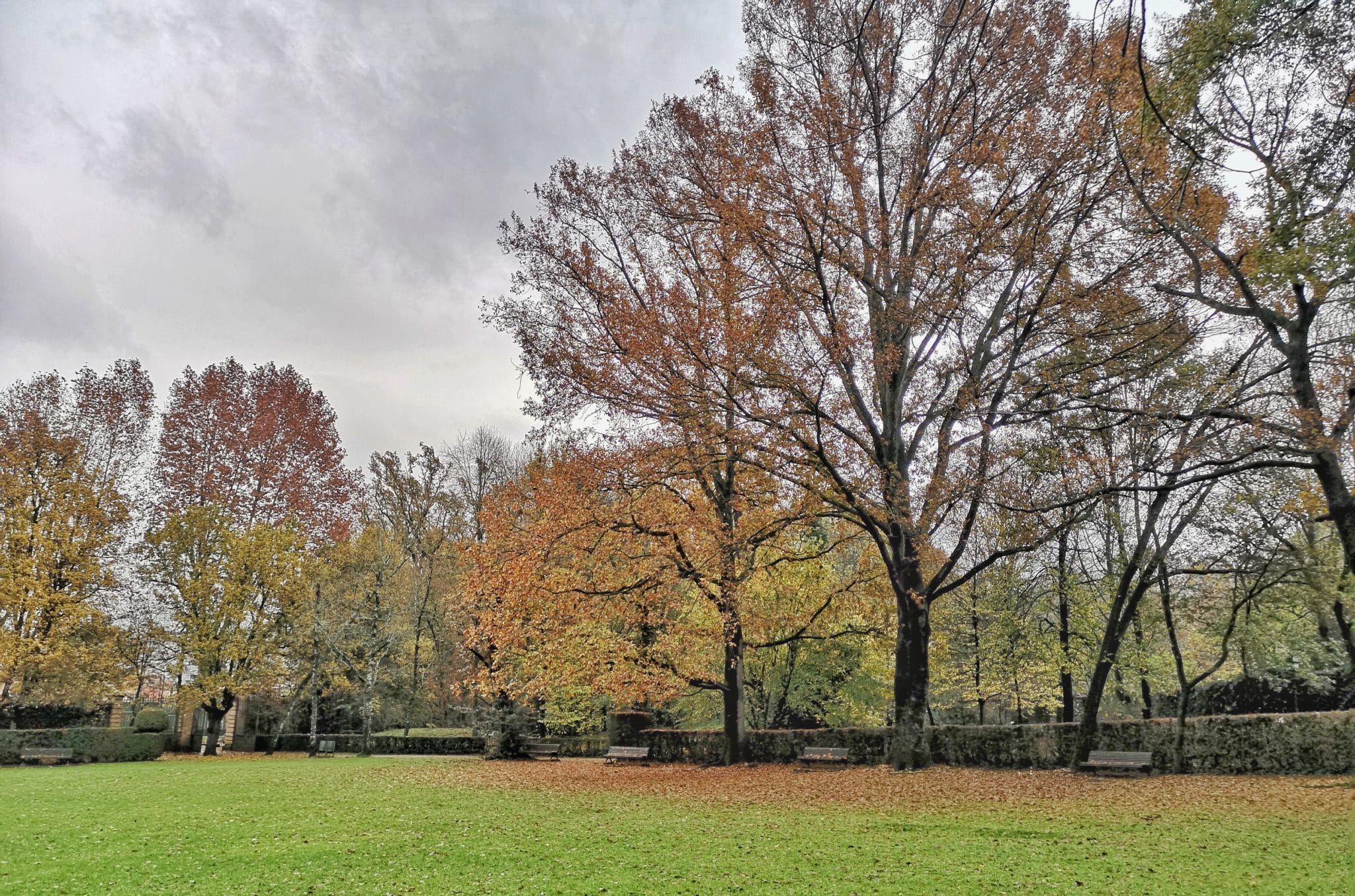 el parc nou d'Olot