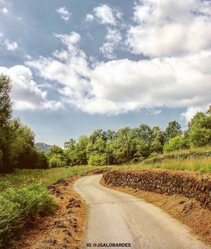 TRIAI FAGEDA excursions olot jgalobardes