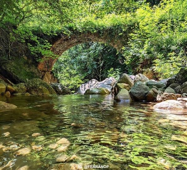 pont de la rovira excursions garrotxa
